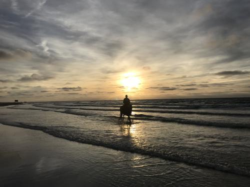 Heerlijk paardrijden op het strand van Renesse